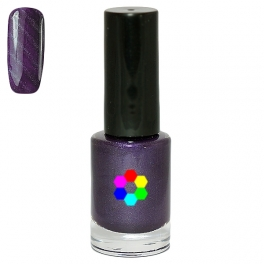 Magnetic nail polish 8ml ►Choose color
